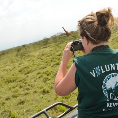 Project Abroad volontärer får syn på utrotningshotade Rothschild giraffer på savannen i Soysambu Conservancy i Kenya